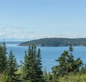 View from high up on Anacortes